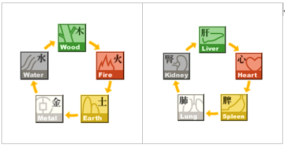The Relationship between the Five Elements - Mutual generation cycle